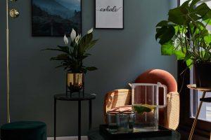 Coin salon chaleureux du studio de yoga à Paris des affiches inspirantes sont mises sur un mur vert, fauteuil orange en velours, une plante est près de la fenêtre, des verres sont posés près d'une carafe d'eau infusée